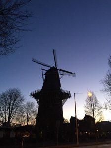 Trendy walk door Amsterdam-Oost waarbij we ook langs Brouwerij 't IJ komen.