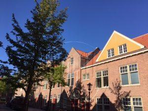 """De Indische Buurt in Amsterdam-Oost wordt een steeds fijnere plek om te wonen. Hier een foto van renovatieproject """"Indië 1"""". Foto van Lex and the City, organisator van uitjes voor groepen in Oost."""
