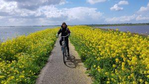 Fahradtouren außerhalb der Stadt | Oben Amsterdam Aktive Tagesausflüge in NordHolland | Waterland Oost, Wasserland Ost