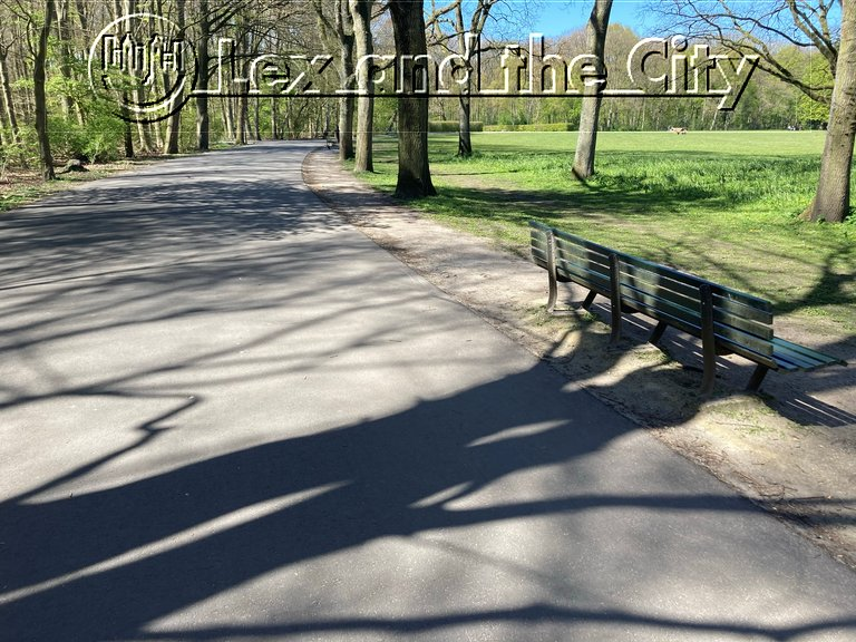 Spot for private inline-skate clinic in the Amsterdamse Bos with Skate-A-Round - Including good tarmac, benches to put on skates and grass for static exercise