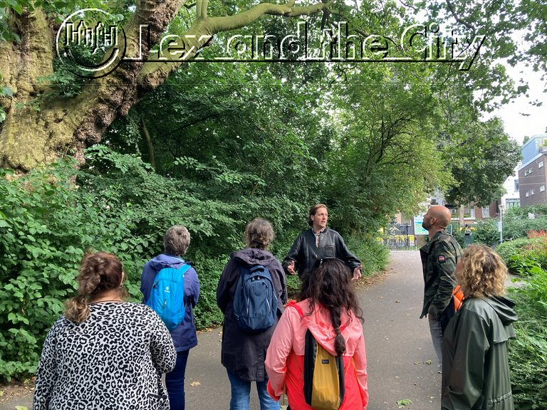 Wandeling met de groep langs de oudste boom van het Oosterpark in Amsterdam met gids Edgar van Lex and the City - Teamuitje van artsenpraktijk; augustus 2021